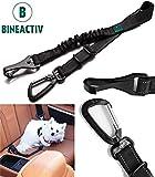 Bineactiv Hunde-Sicherheitsgurt für das Auto, Isofix Befestigung, drehbarer Aluminium-Karabiner, Ruckdämpfung, längenverstellbar (schwarz)