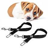 2 Sicherheitsgurte Für Hunde Im Auto 40-60cm | Sicherheitsgeschirr | Hundegurt | Anschnallgurt Um Hunde im Auto Zu Sichern | Hundeleine Gurtschloss | Hundeschutz Sicherheitsleine | Von Everanimals