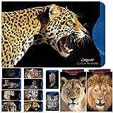[12 Pack] RFID Blocking Hüllen - Designer Set, für Kreditkarte & ID Schützhüllen, ideal für Portemonnaie/Passschutzhülle - Schutz für kontaktlose RFID & NFC Radio Chips - Wunderschönes Katzenmotiv