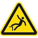 Schild Warnung vor Absturzgefahr 20cm sl PVC gemäß ISO 7010, W008