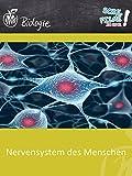 Nervensystem des Menschen - Schulfilm Biologie